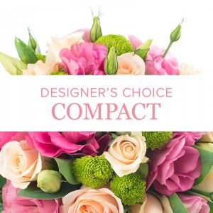 Designer Choice: Compact