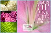 Designer Choice Funeral Flowers
