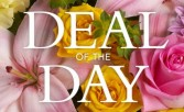 Luxury Large Deal of the day  Large vase arrangement or Box of flowers