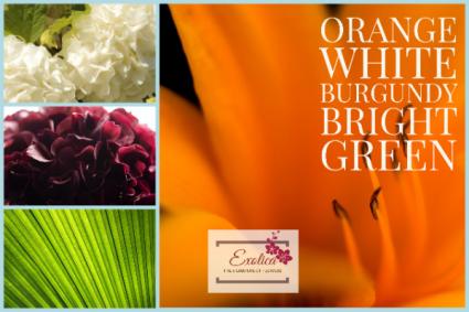 Designer Choice Mixed seasonal flowers with Greenery