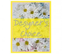 Designer's Choice - New Baby