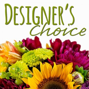 Designer's Choice Let us Design Something For You!