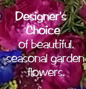 Designer's Choice  in Indialantic, FL | ROSES ARE RED