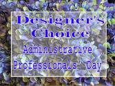 Designer's Choice Admin Day