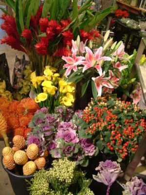 DESIGNERS CHOICE ARRANGEMENT 34.99-59.99