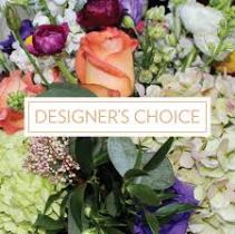 Starting at Designers Choice