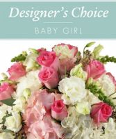 Designers Choice - Baby Girl Baby Girl Bouquet