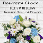 Designer's Choice-Blue