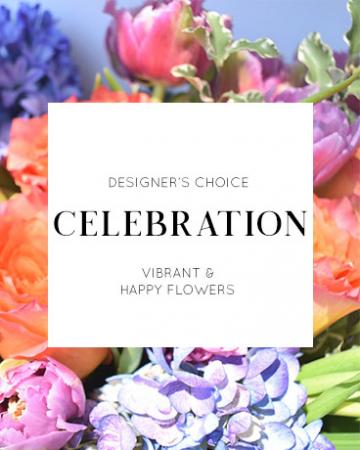 Designer's Choice | Celebration