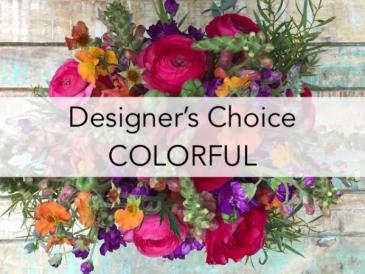 Designer's Choice Colorful