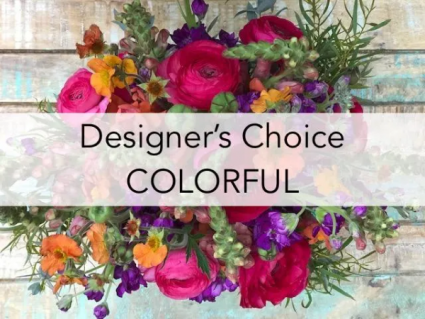 Designer's Choice Colorful