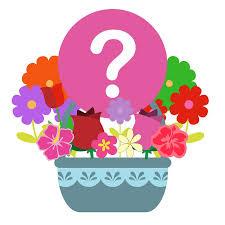 Designer's Choice Cut floral arrangement