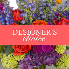 Designer's Choice Deal of the day