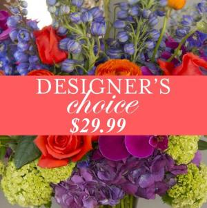 Designer's Choice Deal Of The Day in Plainview, TX | Kan Del's Floral, Candles & Gifts