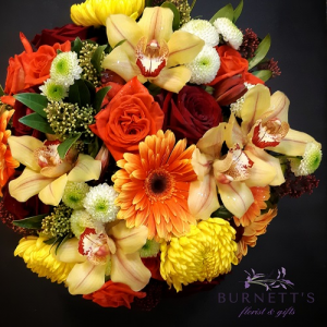 Designers Choice Elegance  in Kelowna, BC   Burnett's Florist