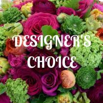DESIGNER'S CHOICE EXQUISTE