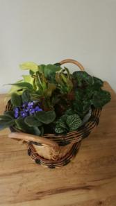 Designers Choice Gift Basket
