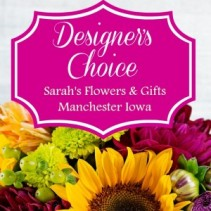Designer's Choice - LARGE