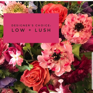 Designers Choice Low + Lush  Unique Vase Arrangement  in Iowa City, IA | Every Bloomin' Thing