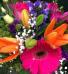 Designers Choice Mixed Bouquet No Vase  Mixed Bouquet