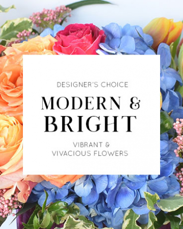 Designer's Choice | Modern + Bright