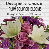 Designer's Choice-Plum