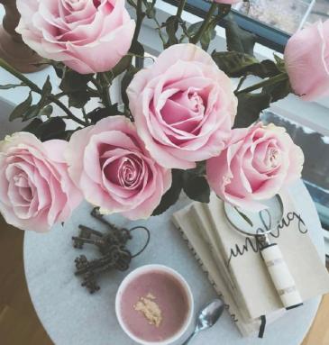 Designer's Choice Premium