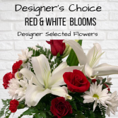 Designer's Choice-Red