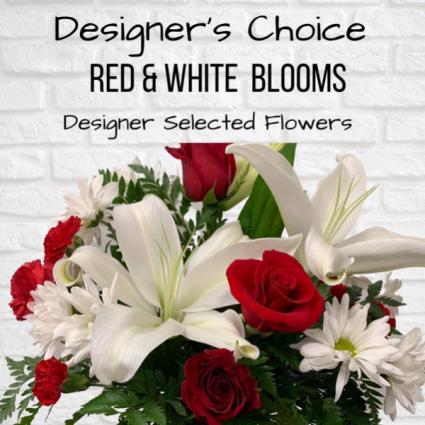 Designer's Choice-Red