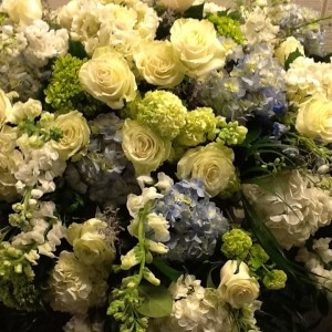 Designers Choice Roses and Hydrangea in Fairfield, CT | Blossoms at Dailey's Flower Shop