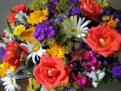 Designer's Choice - Select  Weekly Featured Flowers