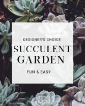 Designer's Choice Succulent