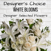 Designer's Choice-White