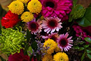 Designer's Choice Arrangement Custom Vased Arrangement in Corner Brook, NL | The Orchid