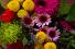 Designer's Choice Arrangement Custom Vased Arrangement