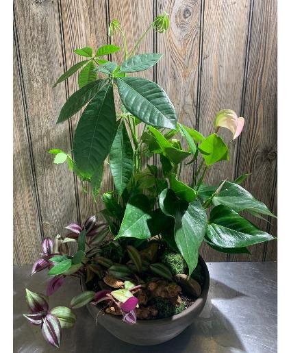 Desirable Mixed Planter