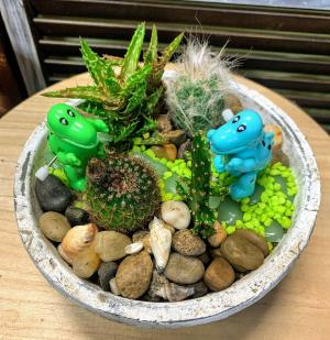 Dino Garden   in Fairview, OR | QUAD'S GARDEN - Home to Trinette's Floral