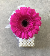 Dipsy Daisy - Hot Pink Corsage