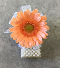 Dipsy Daisy - Peach Corsage