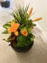 Dish Garden with Freshcut Flowers