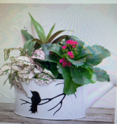 DISHGARDEN bird watering can