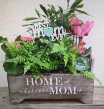 DISHGARDEN Home is wherever mom is