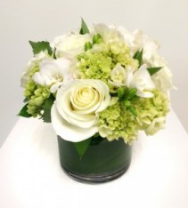 Divine in White Arrangement