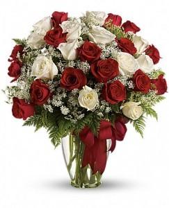 Divine's 24 Roses Rose Arrangement