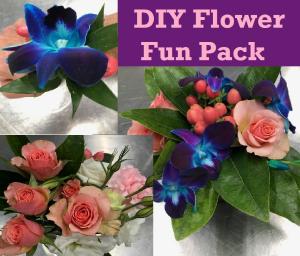 DIY Flower Fun Pack  in Melbourne, FL | VIOLETS IN BLOOM