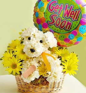 DOG-A-BLE GET WELL SOON  in Texas City, TX | FROM THE HEART FLORIST