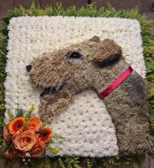 Dog portrait   in Ozone Park, NY   Heavenly Florist