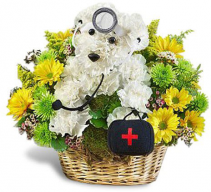 Doggie Doctor Flower Delivery
