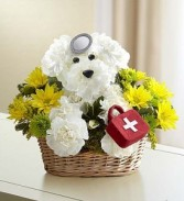 Doggie Howser  Get Well Arrangement