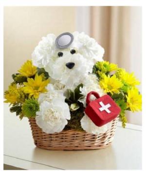 Doggie Howser M.D. Best Seller! in Arlington, TX | Iva's Flower Shop